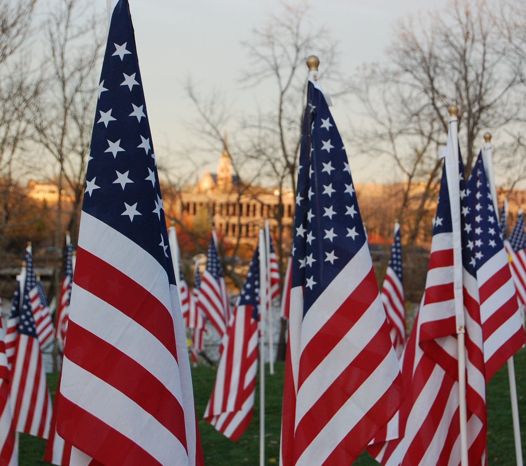Flags on Rotary Hill