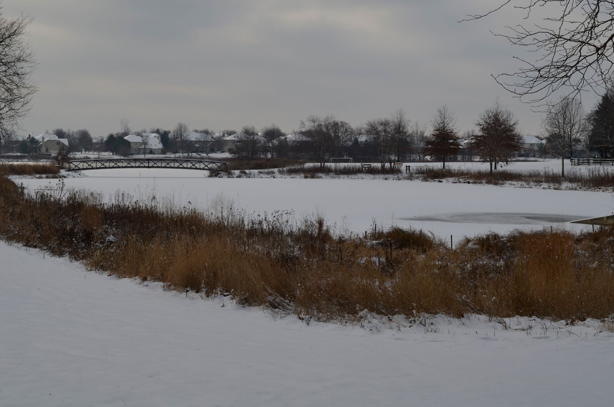 snow-covered-pond-web