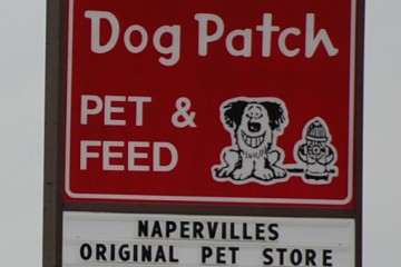dog-patch-sign-web