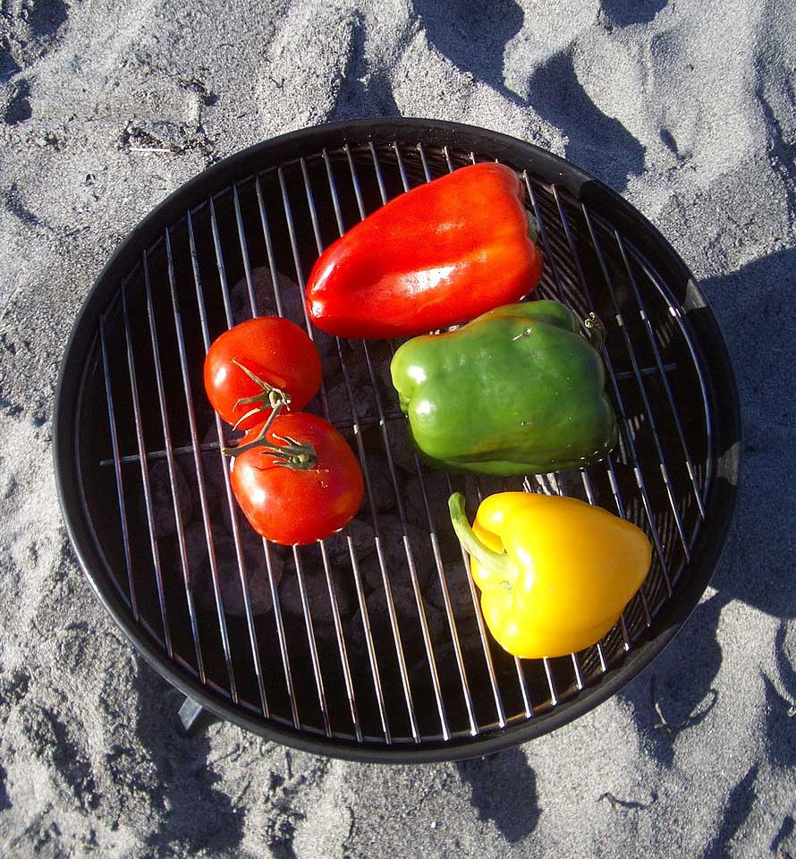 Nutrition Knowledge – Get grillin'