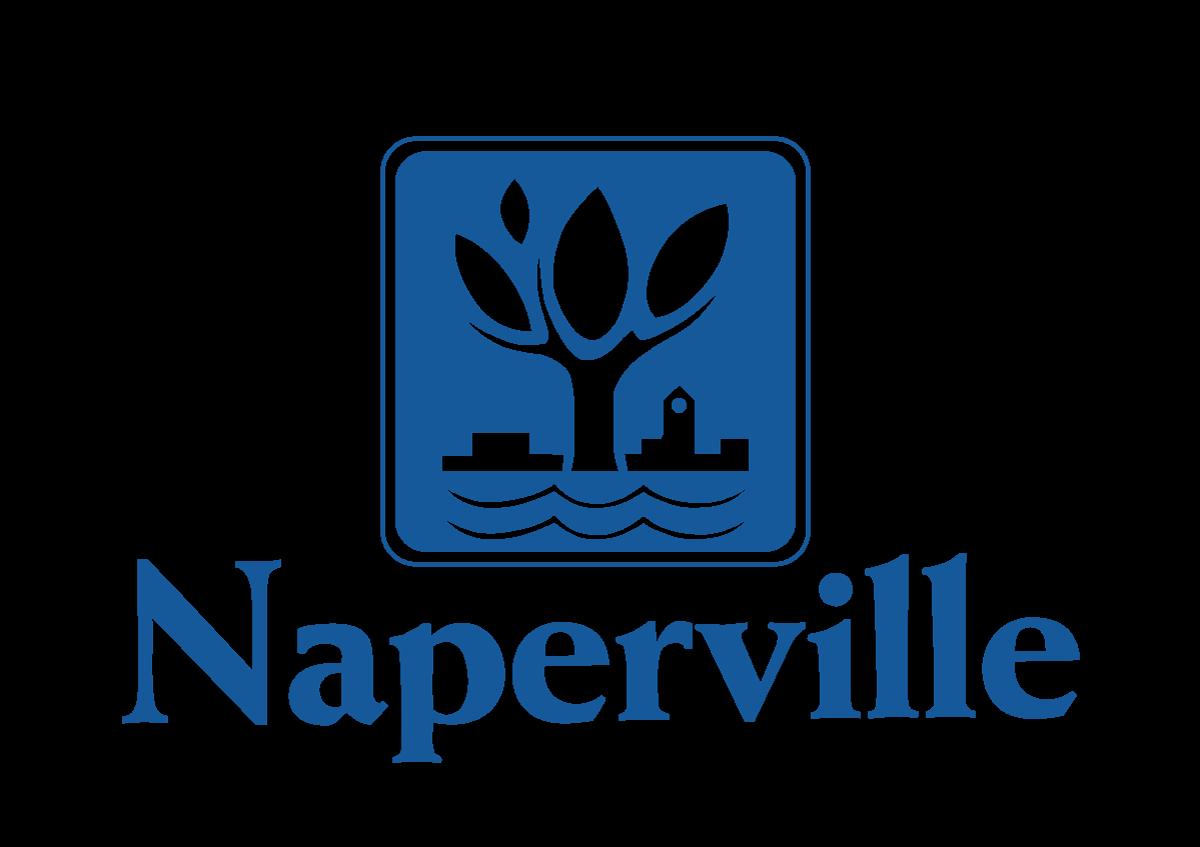 Naperville Arrest Report