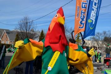 jaycees-rooster