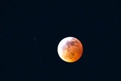 Super-Blood-Wolf-Moon20190121267-13