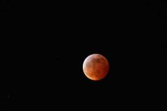 Super-Blood-Wolf-Moon20190121267-18