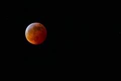 Super-Blood-Wolf-Moon20190121267-40