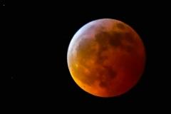 Super-Blood-Wolf-Moon20190121267-41
