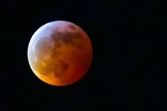 Super-Blood-Wolf-Moon20190121267-42
