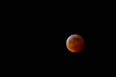 Super-Blood-Wolf-Moon20190121267-43